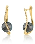 Tahitian South Sea Pearl & Diamond Eliza Earrings - Third Image